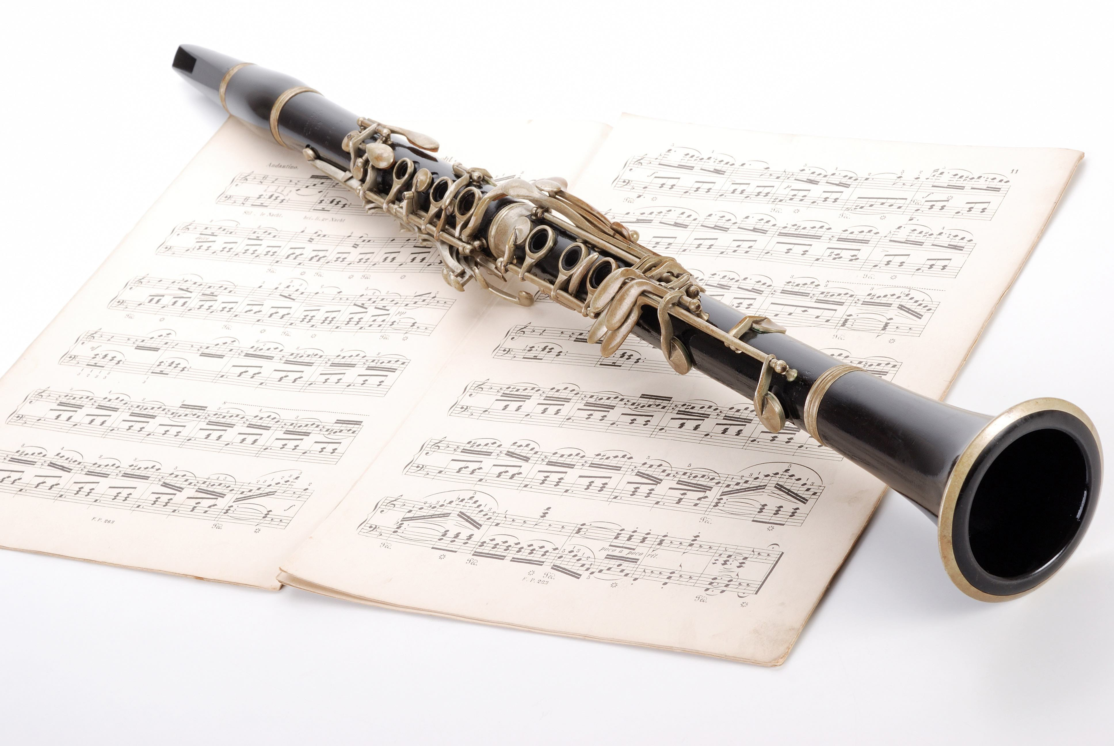 A photo of clarinet.
